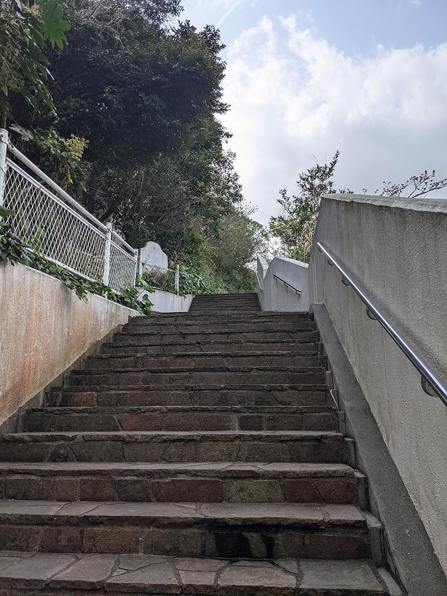 階段でトレーニング