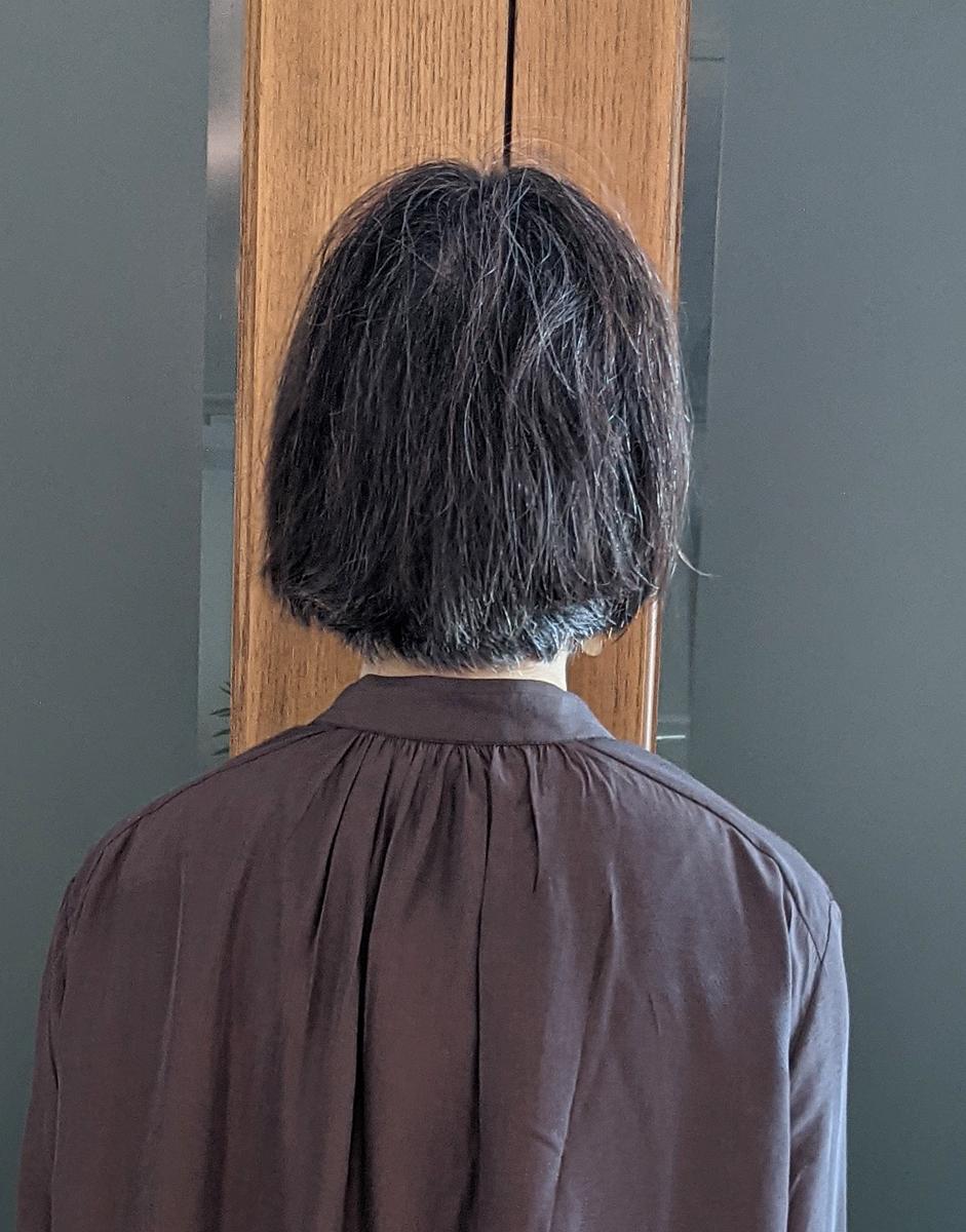 従来のヘアアイロンを使用したバックスタイル