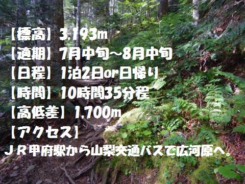 f:id:otonajoshi:20170622185709j:plain