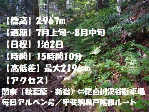 f:id:otonajoshi:20170622190551j:plain