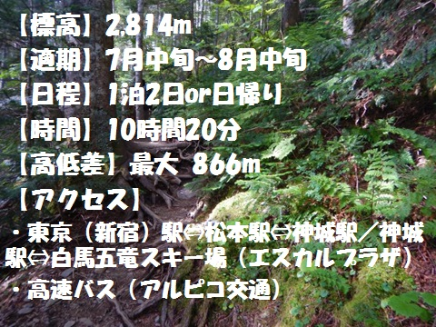 f:id:otonajoshi:20170622191056j:plain