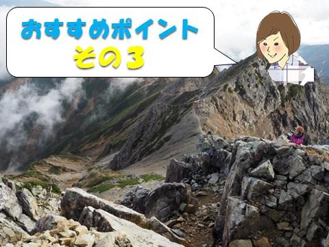f:id:otonajoshi:20170622191203j:plain
