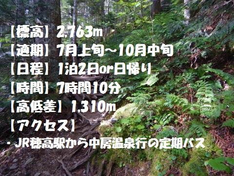 f:id:otonajoshi:20170622191410j:plain