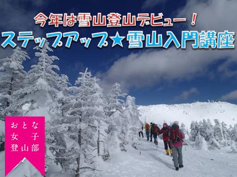 f:id:otonajoshi:20171212151055p:plain