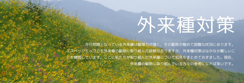f:id:otonarashino:20210415114404j:plain