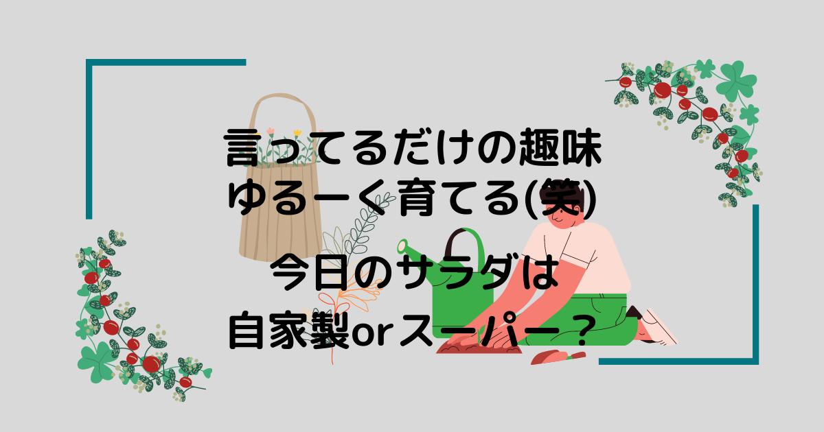 f:id:otonarineko:20210410170358p:plain