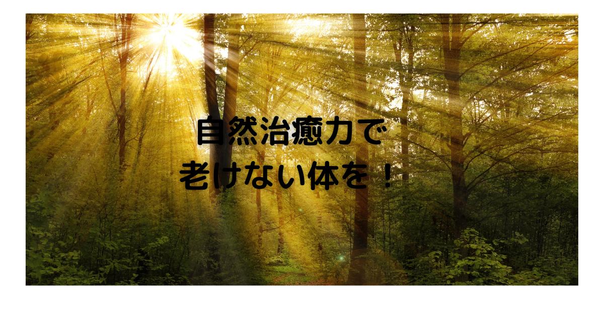 f:id:otonarineko:20210914112452p:plain