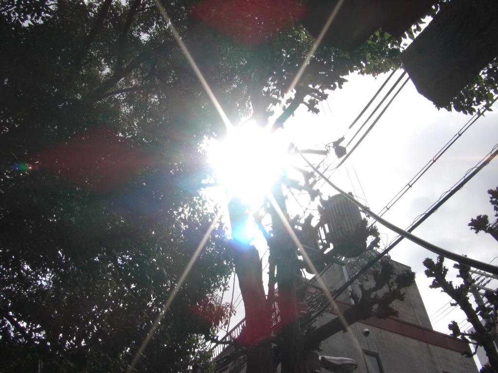 f:id:otono-ha:20170321202107j:plain