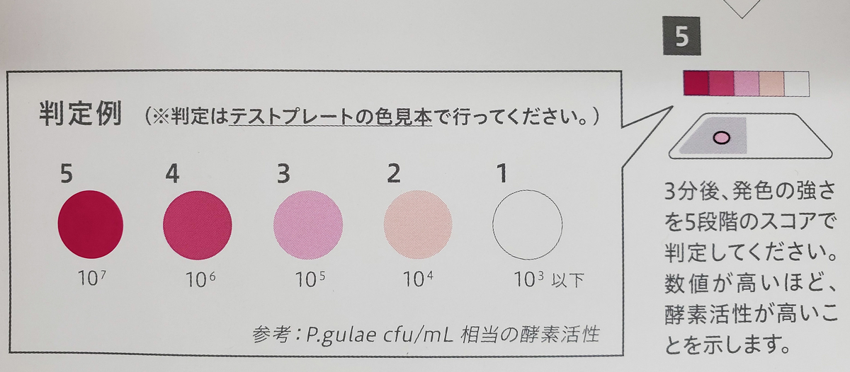 f:id:otsuka-ah:20200924134226j:plain