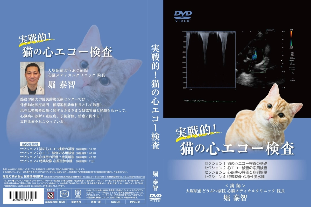 f:id:otsuka-ah:20210406161448j:plain