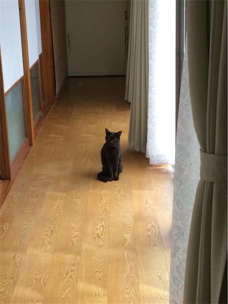 f:id:otsuka_style:20190117101852j:image