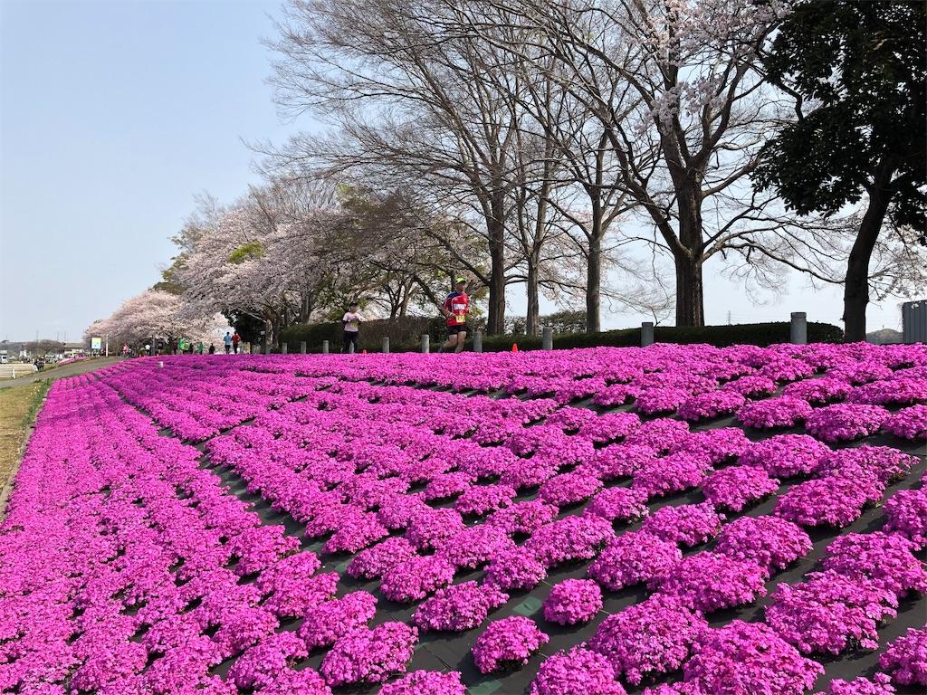 f:id:otsuka_style:20190408093057j:image