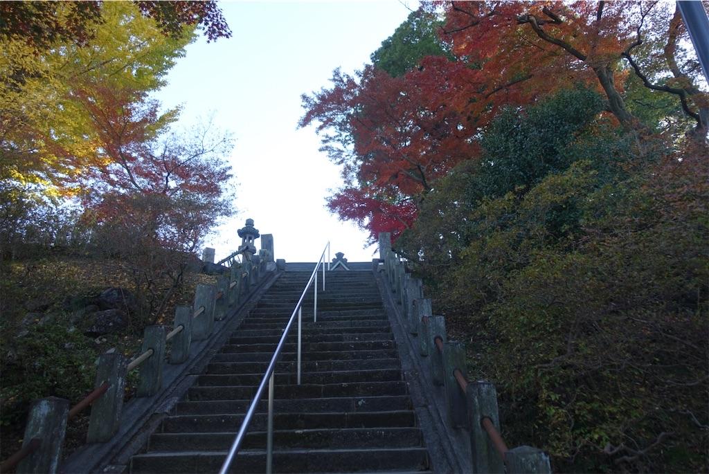 f:id:otsuka_style:20191205121459j:image