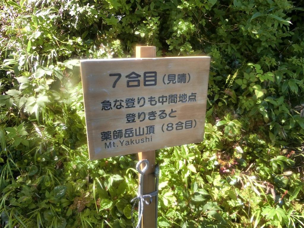 f:id:otsuka_style:20200811142459j:image