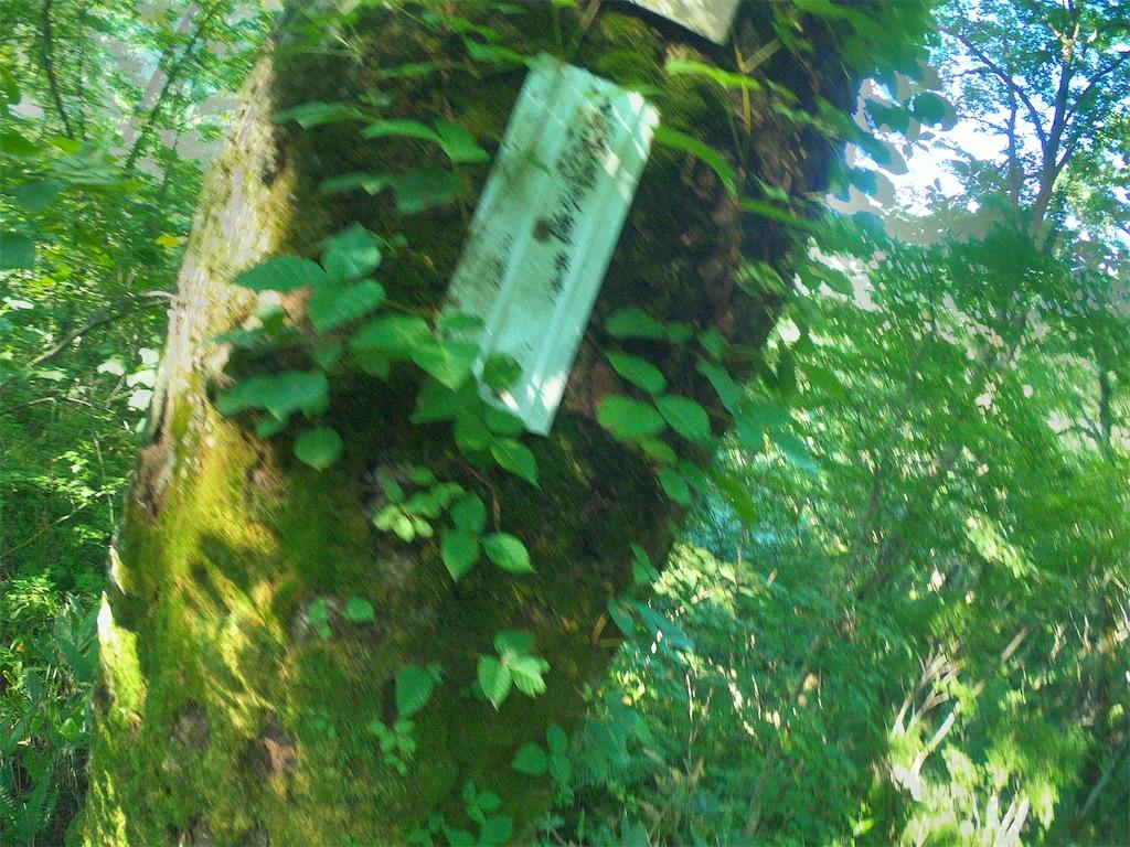 f:id:otsuka_style:20210722141236j:image