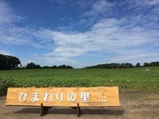 f:id:otsukimidrive:20160728210736j:plain