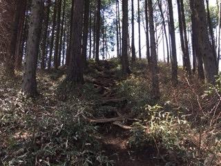 f:id:otsukimidrive:20170426233044j:plain