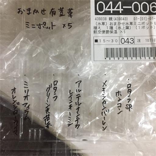f:id:otsumamimonaka:20170109124939j:image