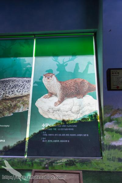 f:id:otters_yvonne:20160614135841j:plain