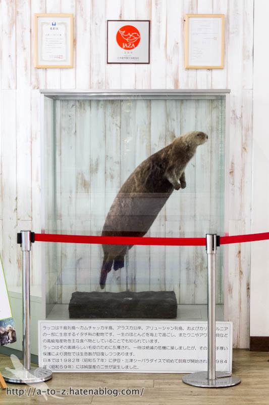 f:id:otters_yvonne:20161026233804j:plain