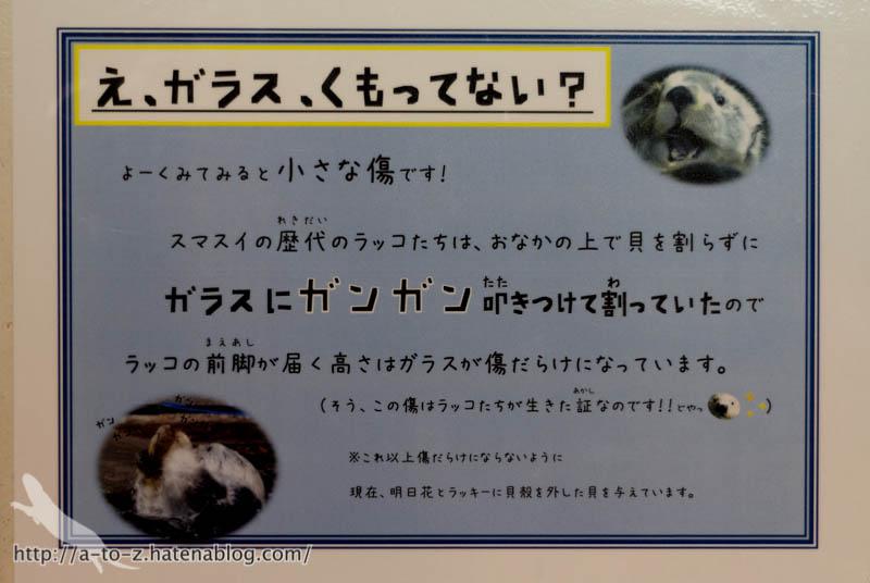 f:id:otters_yvonne:20190201234635j:plain