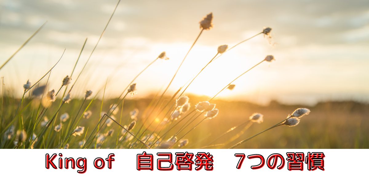 f:id:otyanoma369:20210614071110p:plain
