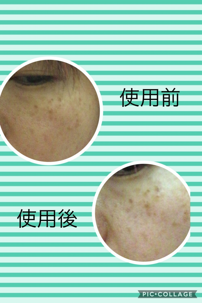 f:id:ouchi-kokoro:20170521233913j:plain