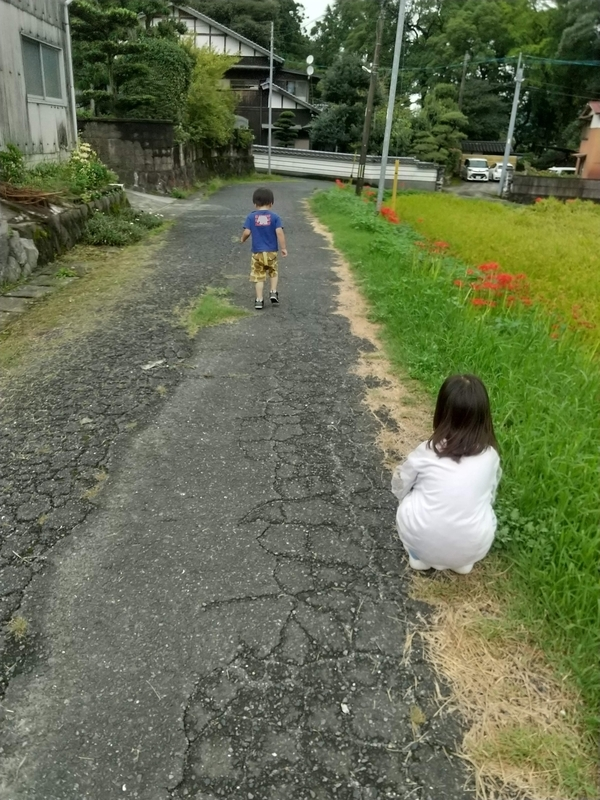 f:id:ouchi-no-necco:20210915213115j:plain