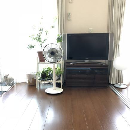 f:id:ouchibiyori:20190525144815j:plain