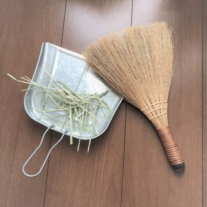 f:id:ouchibiyori:20190702155314j:plain
