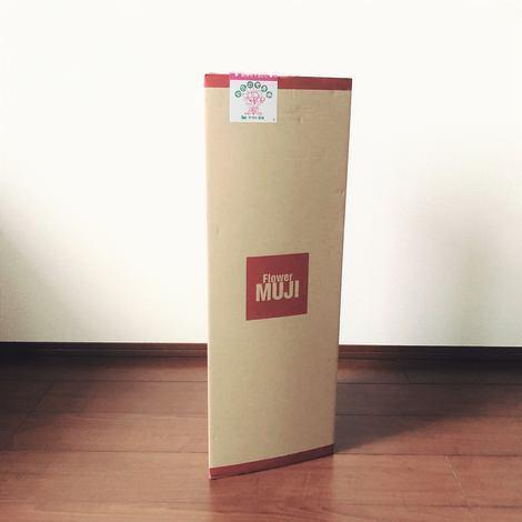f:id:ouchibiyori:20200625202519j:plain