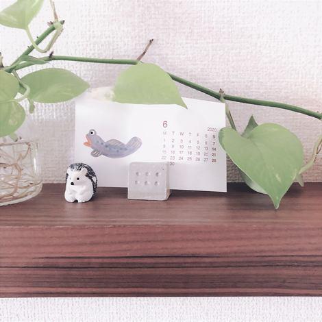 f:id:ouchibiyori:20200630212443j:plain