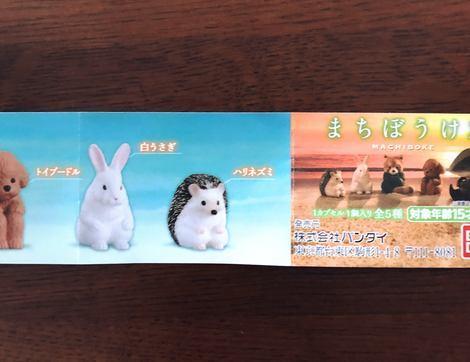 f:id:ouchibiyori:20200630212502j:plain