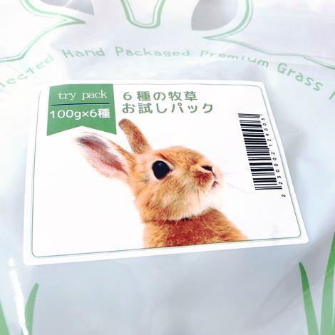f:id:ouchibiyori:20200812201905j:plain