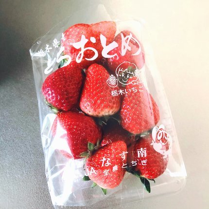 f:id:ouchibiyori:20210417184010j:plain