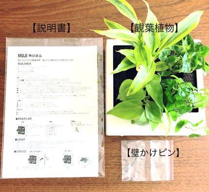 f:id:ouchibiyori:20210425165237j:plain