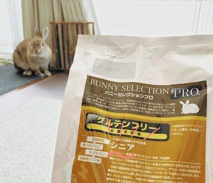 f:id:ouchibiyori:20210626191704j:plain