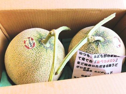 f:id:ouchibiyori:20210725181429j:plain