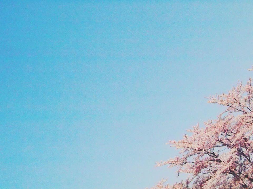 f:id:ouka-miraigaku:20200130200958j:plain