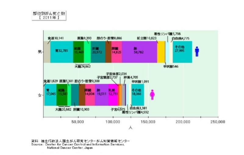 f:id:oukajinsugawa:20140105111944j:plain