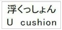 f:id:oukajinsugawa:20151115131804j:plain