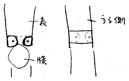 f:id:oukajinsugawa:20160920145652j:plain
