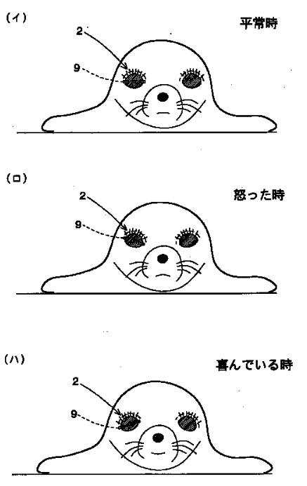 f:id:oukajinsugawa:20161107103451j:plain