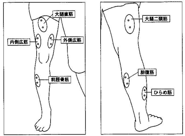 f:id:oukajinsugawa:20170208145803j:plain