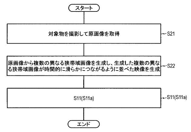 f:id:oukajinsugawa:20170515083036j:plain