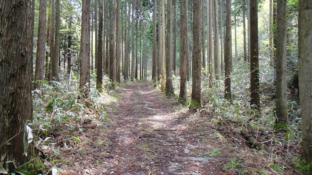 f:id:outdoor-kanazawa:20150801020139j:image