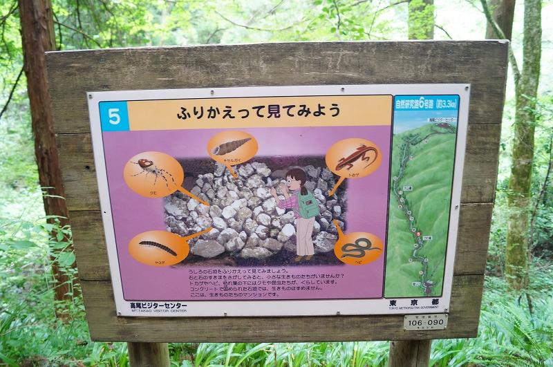 f:id:outdoor-kanazawa:20150809181414j:plain