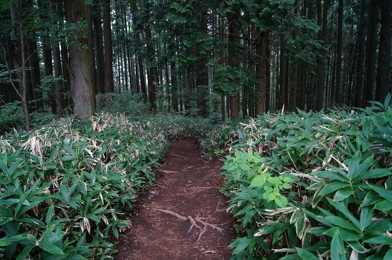f:id:outdoor-kanazawa:20150809195403j:plain