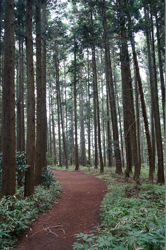 f:id:outdoor-kanazawa:20150809195424j:plain
