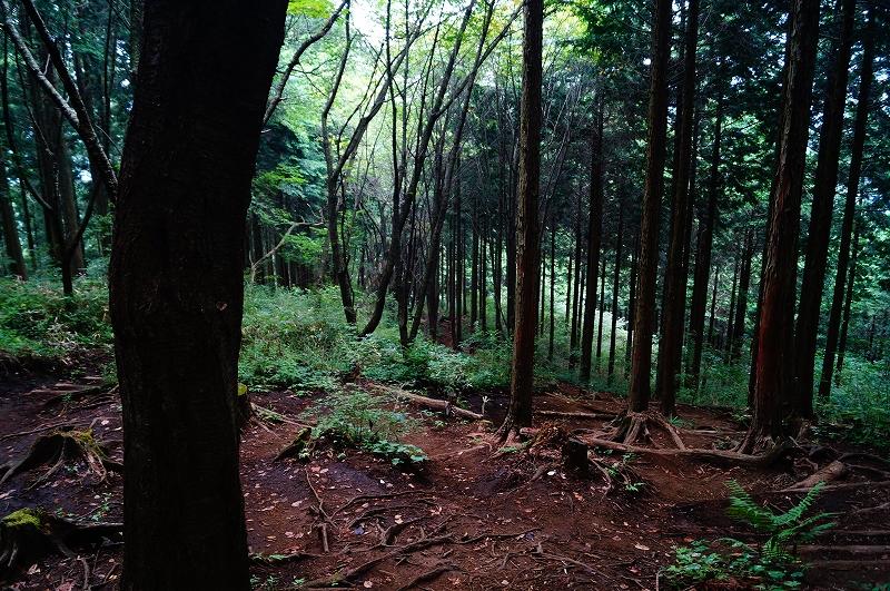 f:id:outdoor-kanazawa:20150809195511j:plain